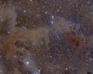 Dust and Gas in Chamaeleon Mosaic