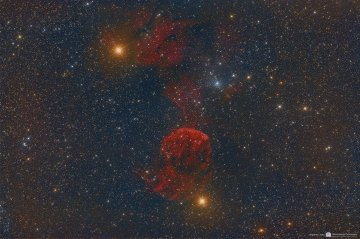 IC 443 The Jellyfish Nebula