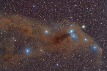 NGC 6727 Dust and Gas in Corona Australis