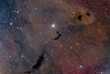 Dust and Gas in Ophiuchus
